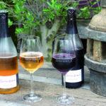Sowohl leckerer Rotwein als auch Weißwein