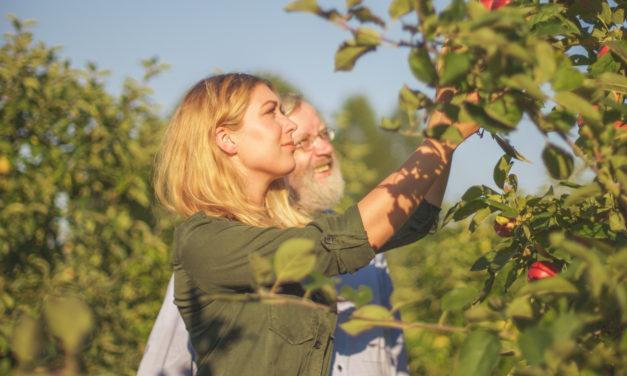 Wiedersehen im Apfelgarten…