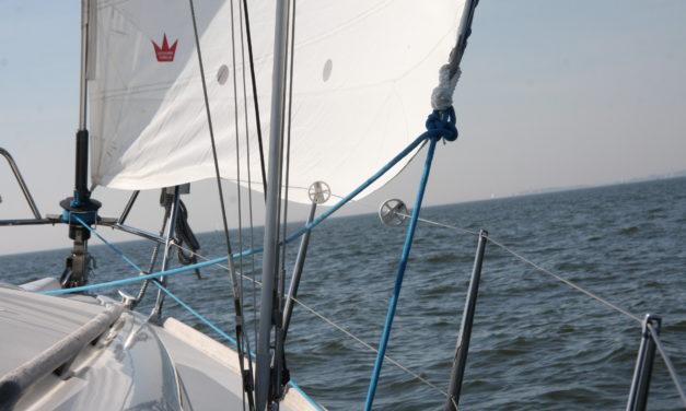 Business-Segeln auf dem IJsselmeer
